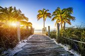 way to the beach in Key West Miami Floride USA poster