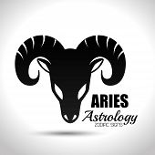 astrological signs of the zodiac, vector illustration eps10 graphic poster