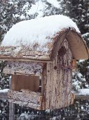 a snow covered bird house hangs in the winter. poster