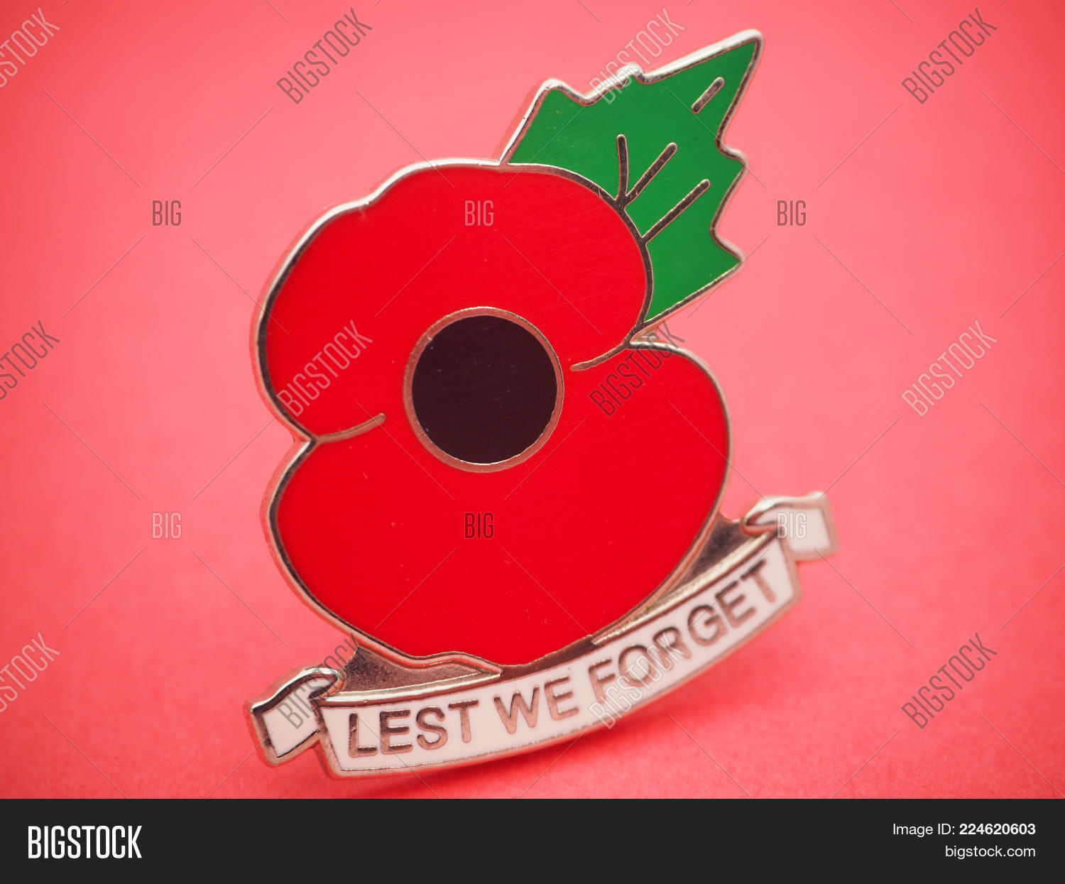 Remembrance national holiday powerpoint template remembrance your text toneelgroepblik Images