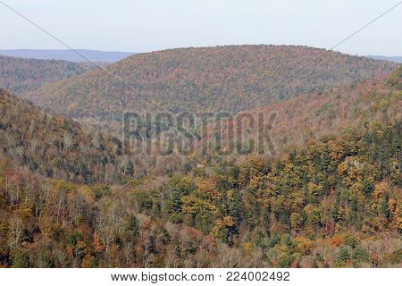 A view of the endless mountains from the Loyalsock Canyon Vista overlook.