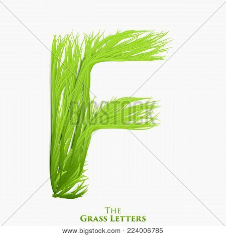 Vector letter F of juicy grass alphabet. Green F symbol consisting of growing grass. Realistic alphabet of organic plants. Spring and ecology typeset illustration
