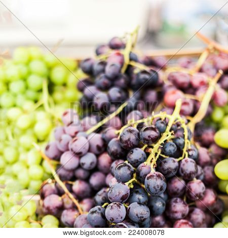 Organic Green and black grape  on  a local farmer market. Healthy local food market concept
