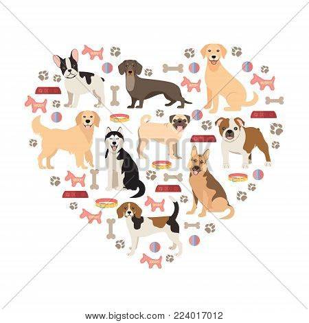 Dog lovers flat style collection. Cartoon dogs breeds set. Vector illustration isolated on white