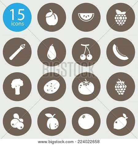 Set of 15 fruit icons set. Collection of plum, melon, broccoli and other elements.