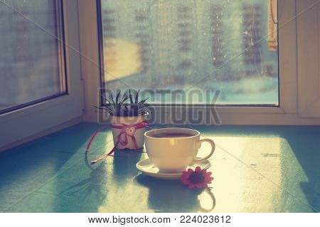 Valentine's Day, a good start to the day for your favorite - steaming cup of coffee stands on a green surface, next to a cactus with a heart symbol in the rays of sun on  background of window.