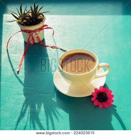 Valentine's Day, breakfast for your favorite - steaming cup of coffee stands on a green surface, next to a cactus with a heart symbol and a red flower in the rays of sun. A good start to the day.