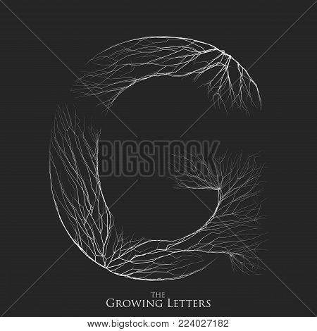 Vector letter G of branch or cracked alphabet. G symbol consisting of growing white lines. Fractured letters. Lighting silhouet of capital letters. Abstract font