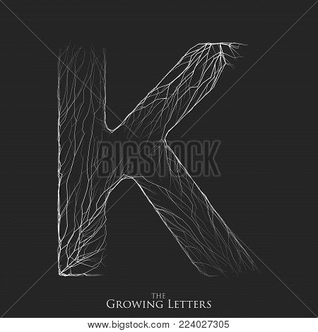 Vector letter K of branch or cracked alphabet. K symbol consisting of growing white lines. Fractured letters. Lighting silhouet of capital letters. Abstract font