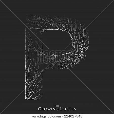 Vector letter P of branch or cracked alphabet. P symbol consisting of growing white lines. Fractured letters. Lighting silhouet of capital letters. Abstract font