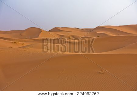 Sand dunes in Erg Chebbi at sunrise, Sahara desert, Morocco, Africa