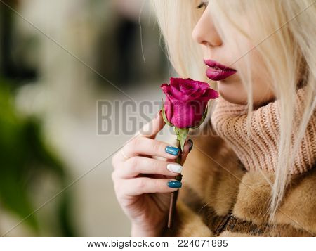 A gift of love. Young girl smelling soft subtle fragrance of a single red rose. Beauty of nature and person.