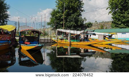 Dal Lake Kashmir India. The local people using Shikara boat at the lake