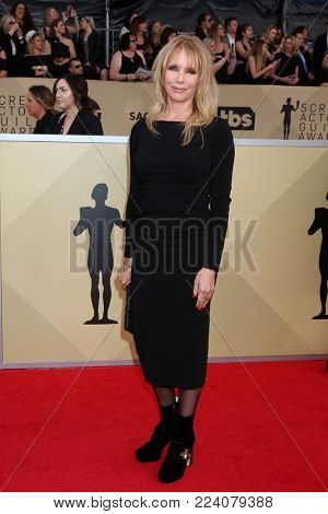 LOS ANGELES - JAN 21:  Rosanna Arquette at the 24th Screen Actors Guild Awards - Press Room at Shrine Auditorium on January 21, 2018 in Los Angeles, CA