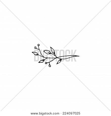 Vector hand drawn object, branch with leaves and berries. Feminine logo element, romantic floral clipart. For business branding and identity. Black on white isolated symbol.