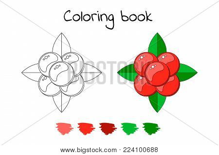 Coloring book for children. vector illustration, stone bramble, forest berries with leaves