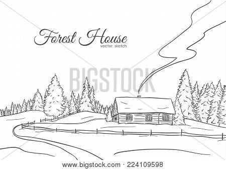 Vector illustration: Hand drawn landscape with road to house and pine forest. Sketch line design