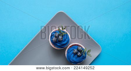 Two cupcakes on a rectangular plate. Top view.
