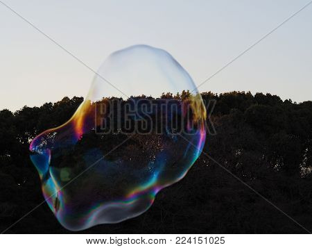 Enormous bubble just about the burst. Reflecting a rainbow of happy joyful colors in the park sunlight but it's all about to come to an end ... can also be an analogy for a financial bubble or investment about to collapse like bitcoin, virtual crypto curr