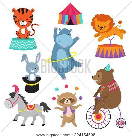 Cartoon circus animals for child birthday card vector. Animal in circus, happy elephant and lion, carnival show with bear on bike illustration