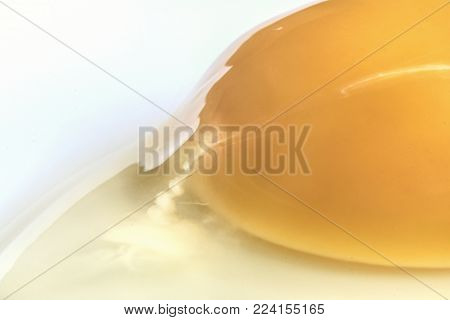 Food and drink, a close up Macro image of a raw egg showing egg yolk and egg white