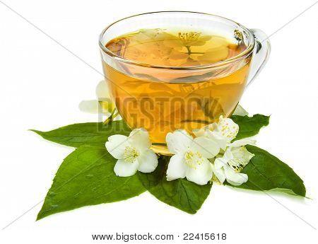 té de jazmín aislado sobre un fondo blanco