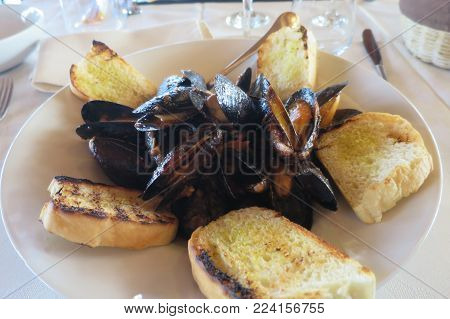 peppery dish of mussels and croutons peppery dish of mussels and croutons