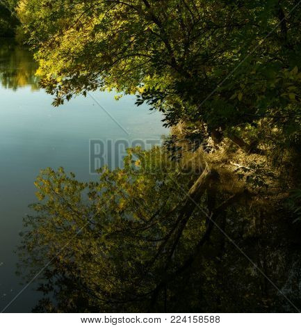 Pond. Reflection. Reflection of trees in pond. Nature background. Beautiful nature.