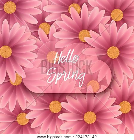 Hello spring text, floral background. Vector Brush lettering Hello Spring
