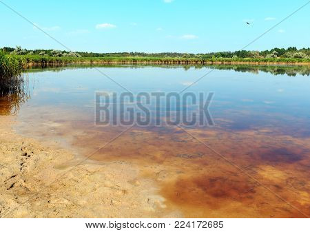 Summer Pryschukove dark brownish-red iodine lake with a therapeutic effect thanks to the high content of iodine (Kherson Region, Ukraine).