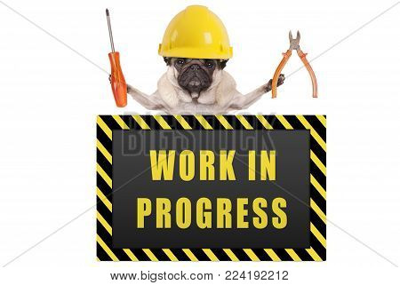 pug dog wearing yellow constructor safety helmet,holding pliers and screwdriver, with warning sign saying work in progress, isolated on white background