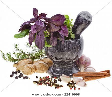 Fresh  herbs and spices in the marble mortar with pestle over white background
