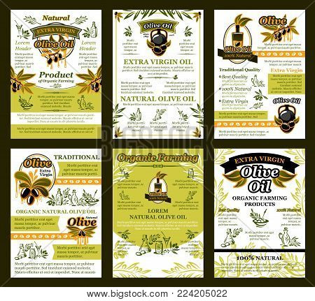 Olive oil posters or brochure design template of green and black olives for extra virgin product. Vector set of oil bottle or jar and drops on olive leaf for best quality organic cooking oil