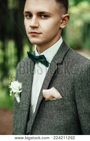 Portrait. Young businessman in a suit and bow tie posing on background Close up.