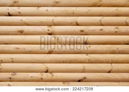 Closeup photo of light brown wooden logs in rows
