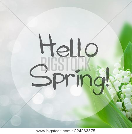 Lilly Of The Valley Flowers On Blue Bokeh Background With Hello Spring Words