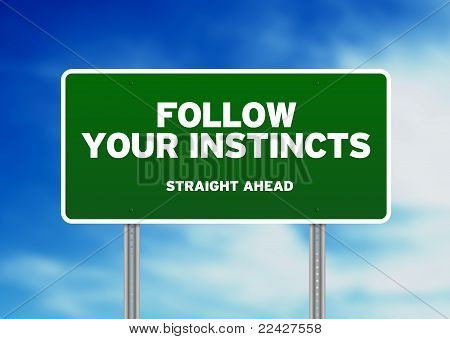 Green Road Sign - Follow Your Instincts