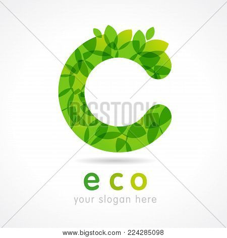 C letter eco green leaf logo. Eco food, organic bio products label. Vector green leaves lettering design template for ecology business
