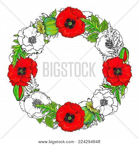 Round frame of red and uncolored poppy flowers, buds and green leaves with empty space for text, hand drawn vector illustration isolated on white background. Poppy flowers forming round frame