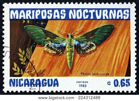 NICARAGUA - CIRCA 1983: a stamp printed in Nicaragua shows gaudy sphinx, pholus labruscae, nocturnal moth, circa 1983