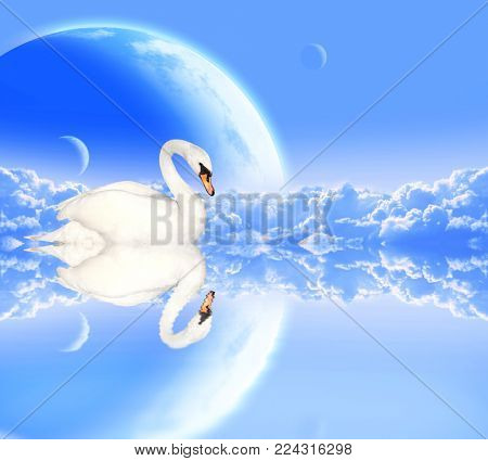 Mute swan on blue background with clouds and planets. Elements of this image furnished by NASA. 3d render