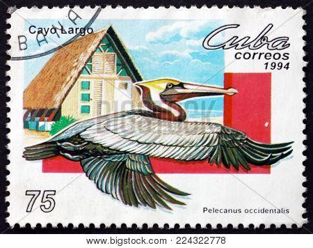CUBA - CIRCA 1994: a stamp printed in Cuba shows brown pelican, pelecanus occidentalis, bird, circa 1994