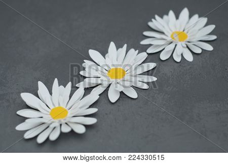 White Artificial Fake Chamomile Flowers, made of artificial material.
