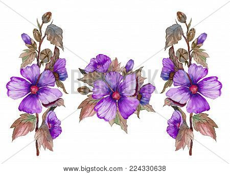 Purple malva flowers on a stem with leaves and buds. Set of illustrations. Fresh mallows isolated on white background.  Watercolor painting. Hand drawn.