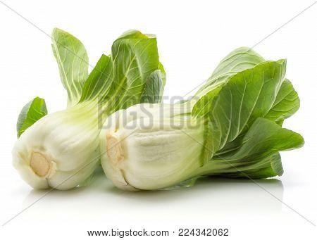 Two bok choy (Pak choi) isolated on white background fresh raw