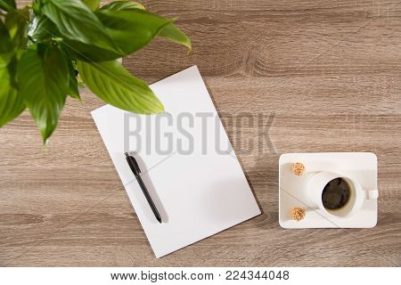 espresso in white cup with two sweet nutty treats on wooden table decorated with plant green leaves and empty white paper and pen ready to take notes