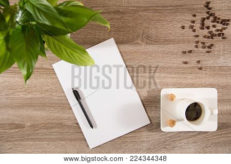 espresso in white cup with two sweet nutty treats on wooden table decorated with plant green leaves brwon coffee beans and empty white paper and pen ready to take notes