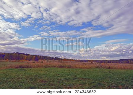 Autumn Evening By The Forest Edge