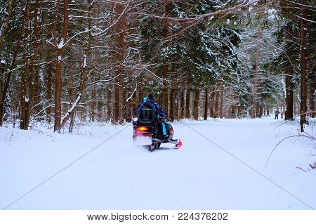 People in winter forest, ride on a snowmobile and skiing. In the foreground is a rear view of two people who go on a snowmobile across the road in the winter forest. Away skate skiers, there are a lot of snow.
