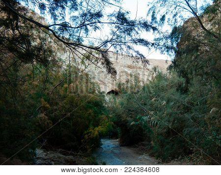 Wadi Bokek trek in the nature reserve of the Judean desert in Israel